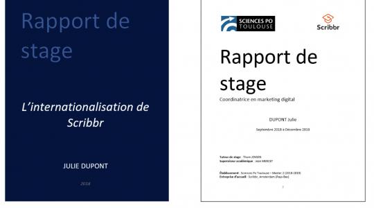 Stage et rapport de stage Comprendre nos pratiques, pour demain