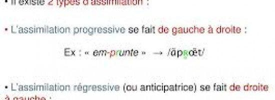 Module : P.C.A. L'assimilation